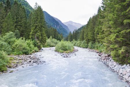 River in the midst of unspoiled nature in Genoa valley close to Madonna di Campiglio Banco de Imagens