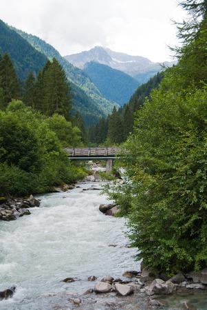 River in the midst of unspoiled nature in Genoa valley close to Madonna di Campiglio Banco de Imagens - 108334297