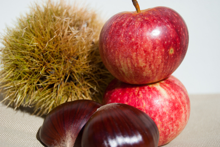 Close-up of fruits next to each other in a colored autumn composition