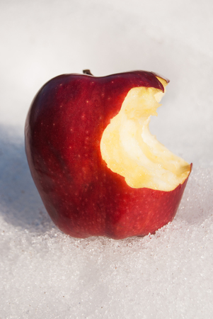 A ripe red apple with a bite placed on the snow Stock Photo