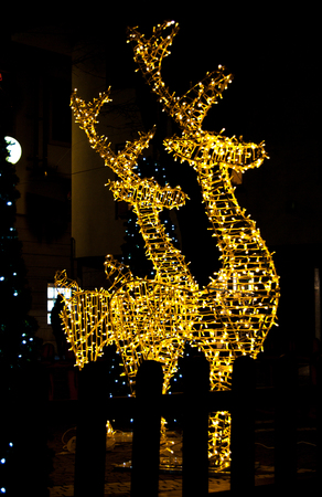 Profile of great reindeer with Christmas illuminations 写真素材