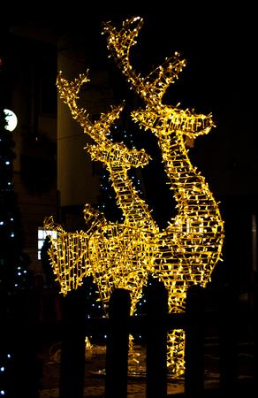 Profilo di grande renna con luminarie natalizie Archivio Fotografico