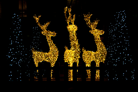 Profile of great reindeer with Christmas illuminations Imagens