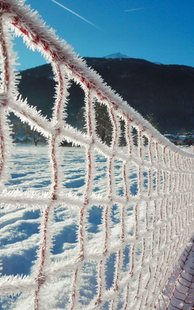Icy snow needles on a checkered net illuminated by the rays of the sun Banque d'images