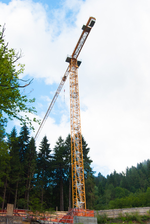 Tower crane in an area under construction in the middle of a forest of green conifers Stok Fotoğraf