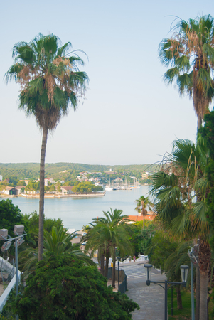 Glimpse on the sea with palms of the capital of the Minorca island