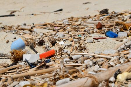 Garbage on the sand brought from the sea Environmental disaster also for animals marine 스톡 콘텐츠