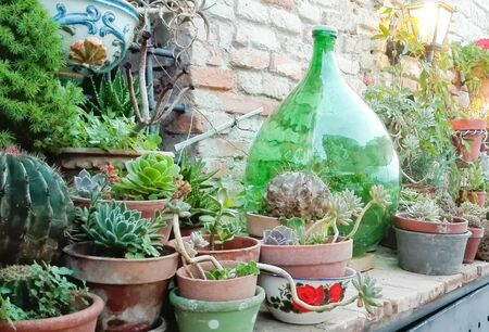 Vintage corner outside of a house with an old green bottle and pots of plants