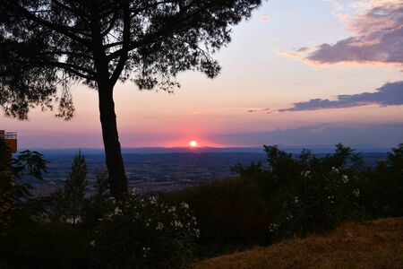 Panorama on the agricultural landscape and hills with shape of pine tree in Italy at the end of the day 스톡 콘텐츠