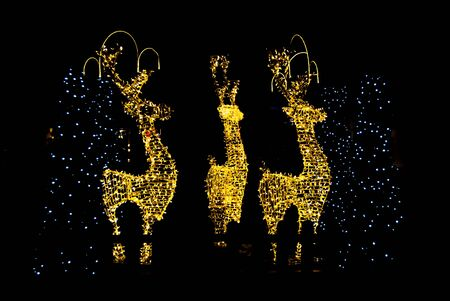 Profile of great reindeer with Christmas illuminations as decoration 스톡 콘텐츠