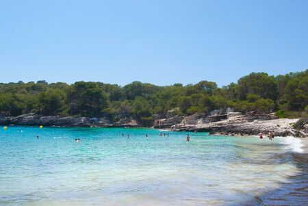 Little beach with turquoise sea and pinewoods around -  beautiful spanish island