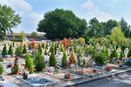 Large overview of part of a cemetery with flowers and decorative trees Banco de Imagens