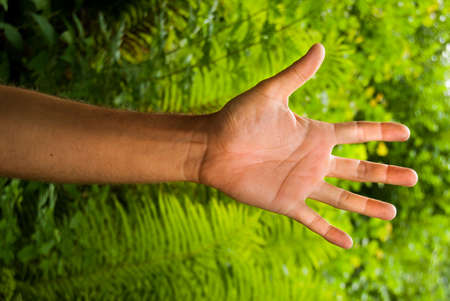 Single open hand of a man and green leaves behind. Ecological footprint 스톡 콘텐츠