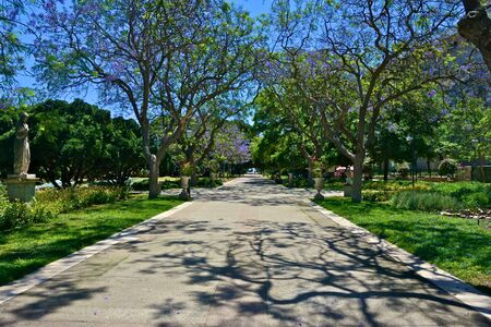 no entrance: public garden of Cagliari with plants, trees and flowers