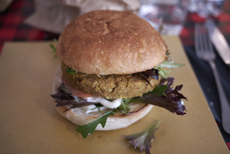 Vegetarian burger with salad