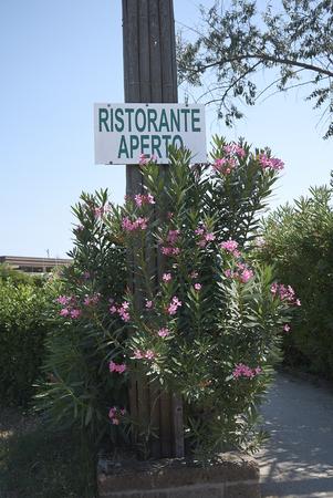 Milano Marittima, Italy -  July 21, 2019 : Restaurant open sign