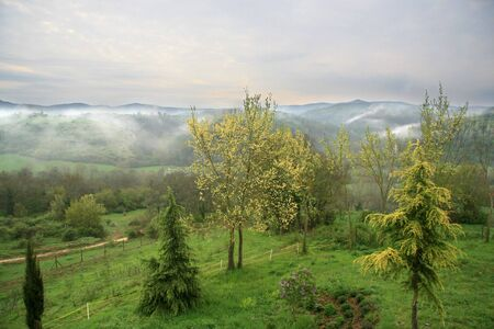 nebbia: A landscape of umbria