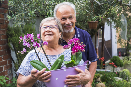 nice pretty caucasian senior couple in outdoor activity staying together with plants and flowers at home. smile and enjoy a life together and retired time. vase with orchid and ulive in background. summer time in italy Stock Photo