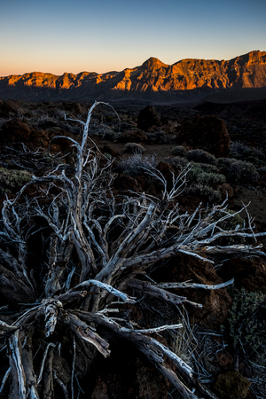 beautiful rocky mountain red valley background. el teide vulcan in tenerife during the sunset.