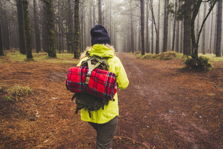 Back view of woman explore high winter forest wood with pines with backpack and red cover - trekking and hiking concept for alternative wild travel people 写真素材