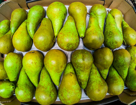 Background with mixed green pear for lunch or dinner. salads - seasonal food with vitamins for vegetarian or vegan people -market business concept