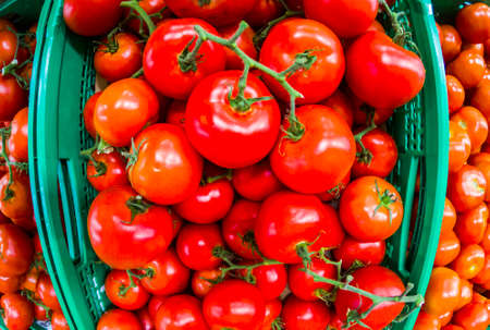 Background with mixed red tomatoes for sauce or salads - seasonal food with vitamins for vegetarian or vegan people -market business concept