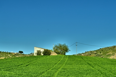 Old Cottage on a Hill of Wheat, Caltanissetta, Sicily, Italy, Europe