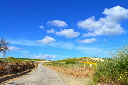 Picturesque Sicilian Scenery in a Country Road, Caltanissetta, Sicily, Italy, Europe Stock Photo