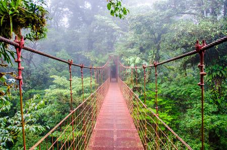 дождь: Мост в тропических лесах - Коста-Рика - Монтеверде Фото со стока