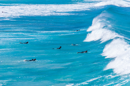 Surfer group in the water