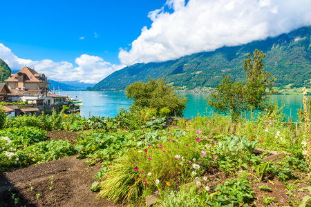 Village Iseltwald at Lake Brienz - beautiful lake in the alps at Interlaken, Switzerland