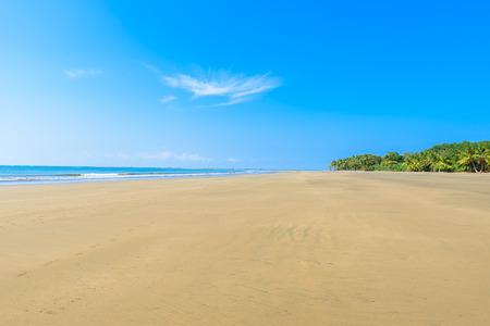Marino Ballena National Park in Uvita - Punta Uvita - Beautiful beaches and tropical forest at pacific coast of Costa Rica