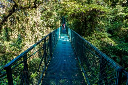 Hanging Bridges in Cloudforest - Monteverde, Costa Rica Stock Photo