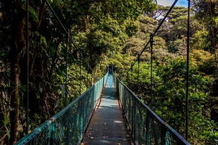 Canopies: Hanging Bridges in Cloudforest - Monteverde, Costa Rica Stock Photo