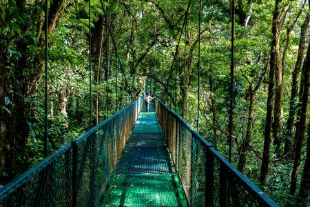 cloudforest-Monteverde, 코스타리카에에서 걸려 다리에 소녀