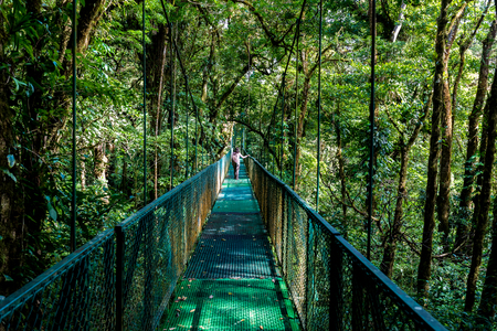 Girl on hanging bridge in cloudforest - Monteverde, Costa Rica