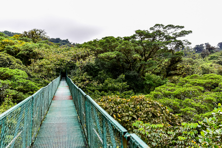 Hanging Bridges in Cloudforest - Costa Rica