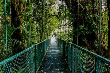 Hanging Bridges in Cloudforest - Monteverde, Costa Rica Banco de Imagens