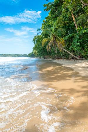 Cahuita - Nationalpark with beautiful beaches and rainforest in Costa Rica Stock Photo
