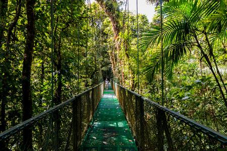 Hanging Bridges in Cloudforest - Monteverde, Costa Rica 스톡 콘텐츠