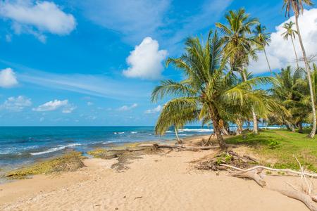 プラヤ Cocles - プエルト ビエホに近い美しい熱帯ビーチ - コスタリカ 写真素材