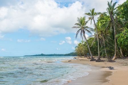 Playa Cocles - hermosa playa tropical cerca de Puerto Viejo - Costa Rica Foto de archivo