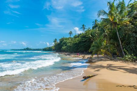 플라 야 치 키타 - 코스타리카, 푸에르토 비에요 근처 야생 해변 스톡 콘텐츠
