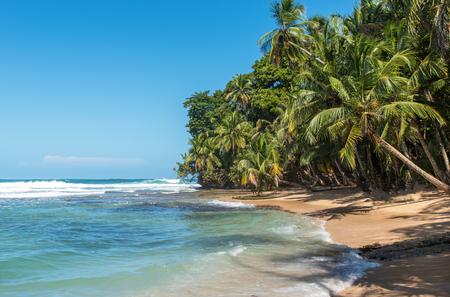 playa: Paradise wild beach of Manzanillo Park in Costa Rica