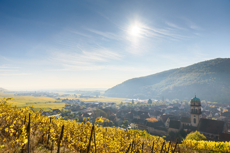 Chateau de Kaysersberg - historical village in wine region, vineyards in Alsace, France - Europe