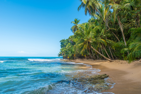 Paradise wild beach of Manzanillo Park in Costa Rica