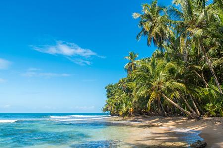 코스타리카에서 만사 니요 공원의 낙원 야생 해변