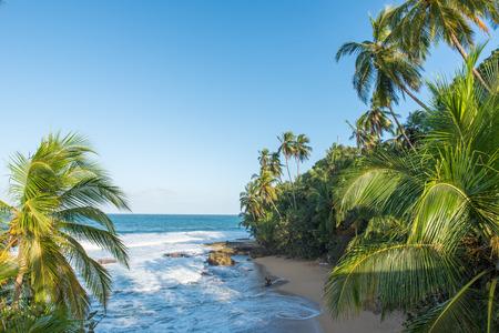 limon: Wild caribbean beach of Manzanillo at Puerto Viejo, Costa Rica