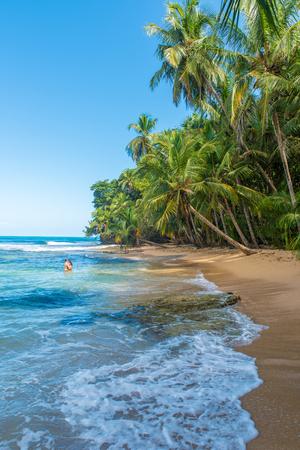 limon: Paradise wild beach of Manzanillo Park in Costa Rica