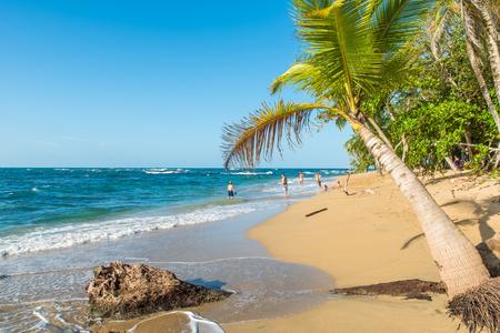 Punta Uva beach in Costa Rica, wild and beautiful caribbean coast